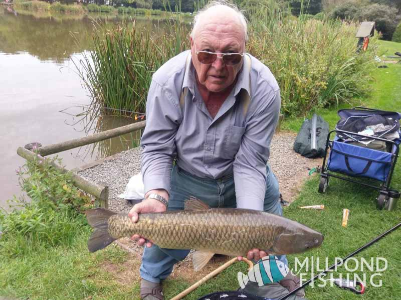 Catch of the Day - 27th August 2019